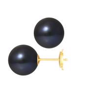 Boucles d'Oreilles – Perles Rondes 10-10.5 mm  - Qualité AA - Système Poussettes Sécurisée (PM) Or 750 Millièmes