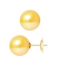 Boucles d'Oreilles – Perles Rondes 10.5-11 mm  - Qualité AA - Système Poussettes Sécurisée (GM) Or 750 Millièmes