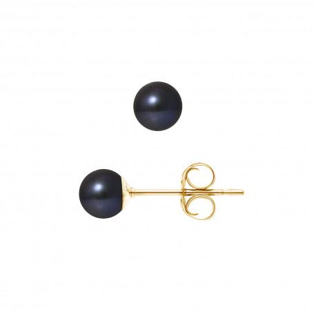 """Boucles d'Oreilles Or 375 Millièmes et Véritable Perle de Culture d'Eau Douce Ronde Colori """"BLACK TAHITI"""" de 5,5-6 mm"""