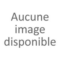 Collier Rang - Perles Rondes 8-9 mm - Qualité AA - Fermoir Anneau Marin GM Or 750 Millièmes